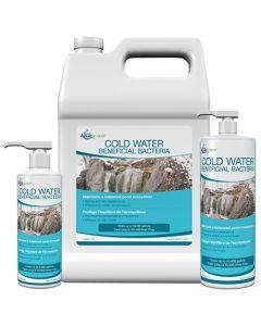 Aquascape Cold Water Bacteria